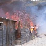 Incendio afecto 22 casas.